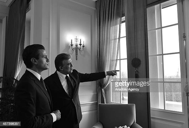 Mexican President Enrique Pena Nieto meets with Turkish President Abdullah Gul at the Cankaya Palace on December 17, 2013 in Ankara, Turkey....