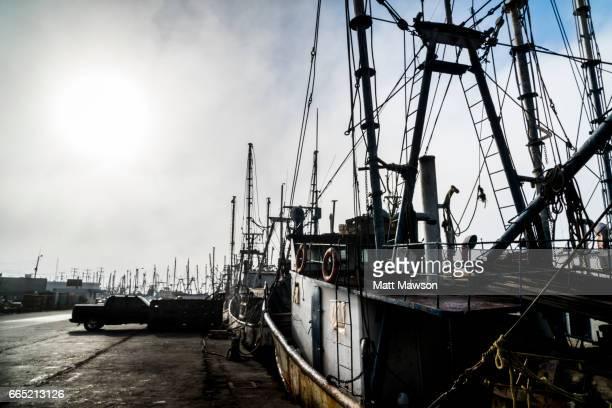 Mexican Shrimp Fishing Boats in dock. Mazatlán. Sinaloa State. Mexico