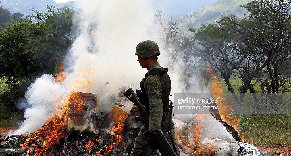 Mexican soldiers burn marijuana plants found amid a field of blue agave - the plant used for the production of tequila - in El Llano, Hostotipaquillo, Jalisco State, Mexico on September 27, 2012. Members of the Mexican military conducted an operation in the area where so far they have destroyed 40 hectares of marijuana plantations and burned more than 50 tons of plants. AFP PHOTO / Hector Guerrero