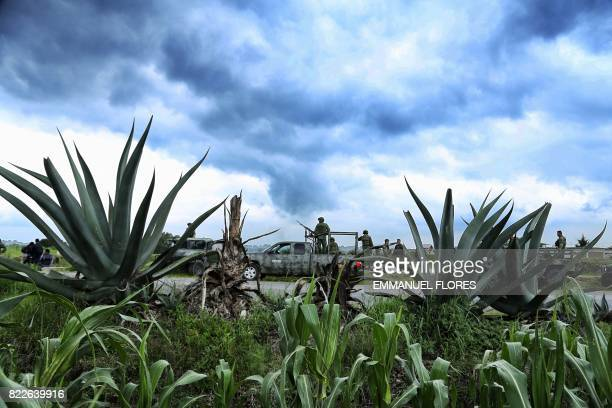 TOPSHOT Mexican soldiers remain in an illegal poppy plantation as part of the army's program to eradicate growing illegal opium production in the...