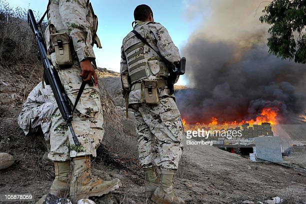 Mexican soldiers watch as bundles of seized marijuana are incinerated at a military base in Tijuana Mexico on Wednesday Oct 20 2010 Authorities...