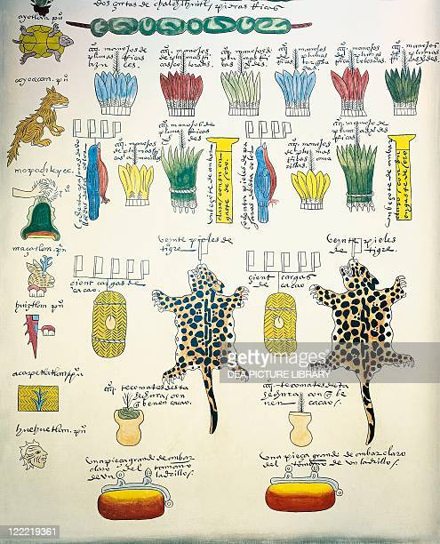 Mexico 16th century Codex Mendoza Reproduction of a page with illustration of taxes paid to Aztec rulers by subject peoples