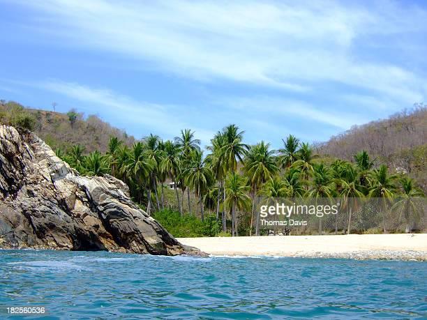 mexico beach - oaxaca stock photos and pictures