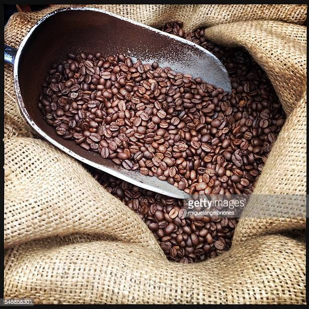 mexico, chiapas, coffee beans in scoop - chiapas stock pictures, royalty-free photos & images