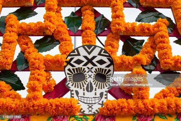 mexico city day of the dead - day of the dead stock pictures, royalty-free photos & images