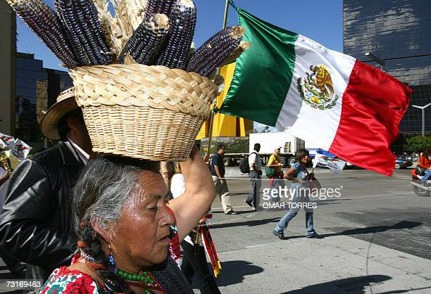A peasant woman who carries a basket full of cobs on her head leads 31 January 2007 in Mexico City a demonstration against the price rise of corn...