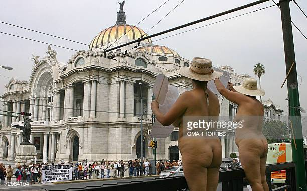 Two peasants members of the indigenous activist group '400 Pueblos' strip off in front of the Fine Arts Palace in Mexico City 16 November 2006...