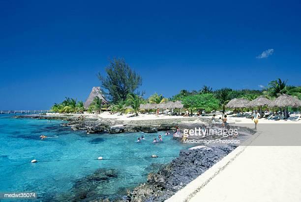 mexico, cozumel, chankanaab national park, view of a rocky beach - parco nazionale foto e immagini stock