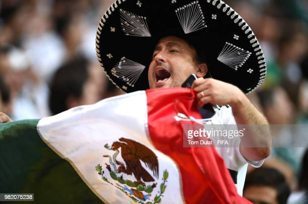 Mexico fan celebrates during the 2018 FIFA World Cup Russia group F match between Korea Republic and Mexico at Rostov Arena on June 23 2018 in...