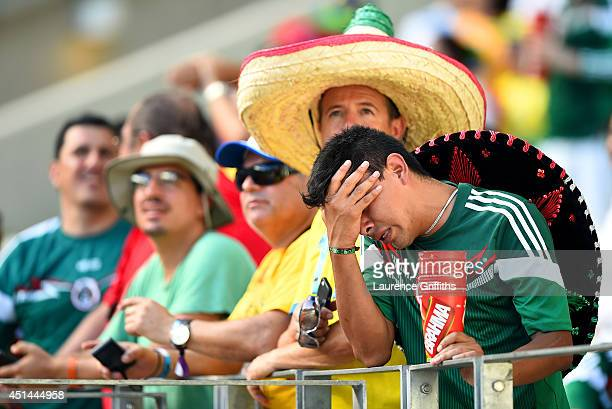 Mexico fan cries after his team's defeat to the Netherlands in the 2014 FIFA World Cup Brazil Round of 16 match between Netherlands and Mexico at...