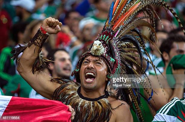 Mexico fan dressed up in a costume celebrates a goal during the 2014 FIFA World Cup Brazil Group A match between Croatia and Mexico at Arena...