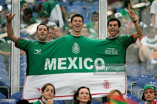 Mexico fans show their colours during the FIFA World Cup Germany 2006 Group D match between Portugal and Mexico at the Stadium Gelsenkirchen on June...