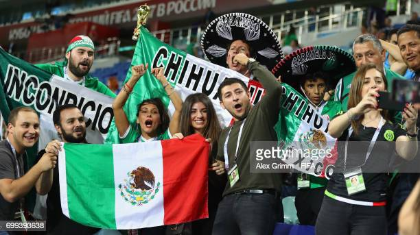 Mexico fans surport their team during the FIFA Confederations Cup Russia 2017 Group A match between Mexico and New Zealand at Fisht Olympic Stadium...