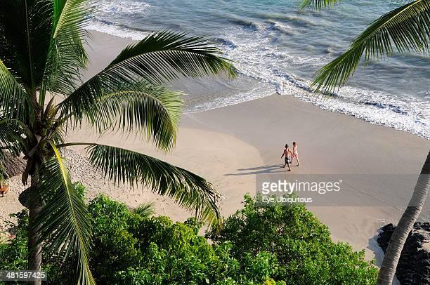 Mexico Guerrero Zihuatanejo View through palm trees onto Playa la Ropa sandy beach