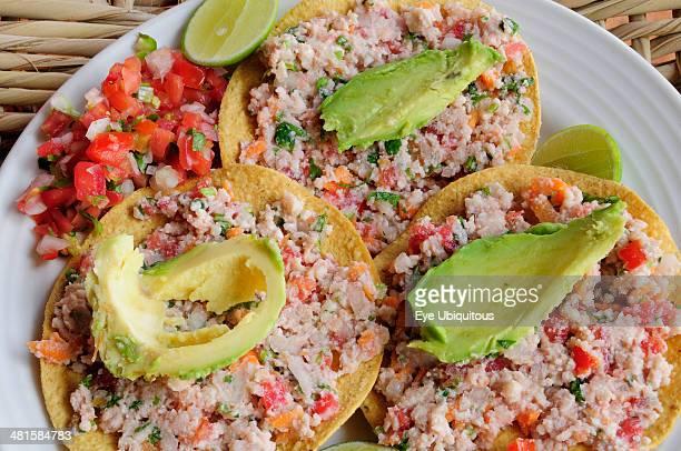 Mexico Jalisco Puerto Vallarta Fish ceviche served with tacos avocado and tomato salsa.