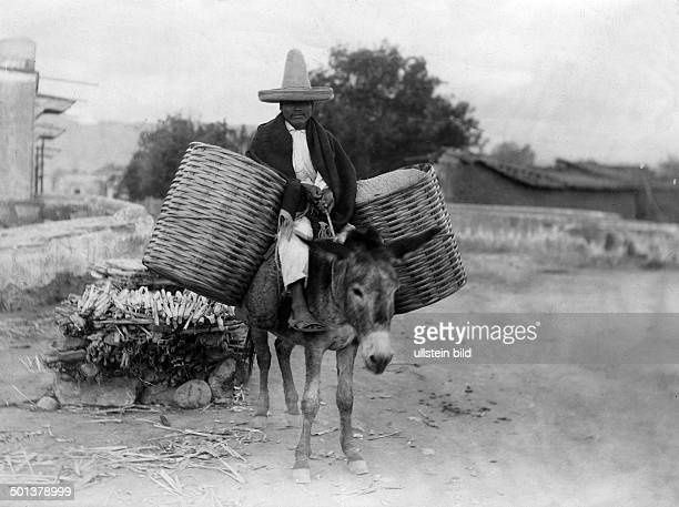 Man riding on a donkey and transporting goods date unknown