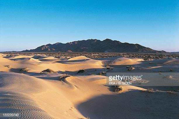 Mexico State of Chihuahua Desert dunes