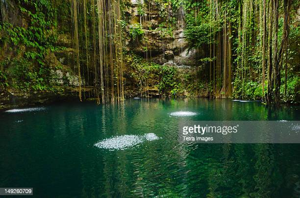 Mexico, Yucatan, Scenic lake