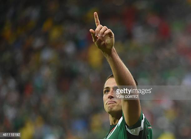 Mexico's forward Javier Hernandez celebrates after scoring the 03 during a Group A football match between Croatia and Mexico at the Pernambuco Arena...