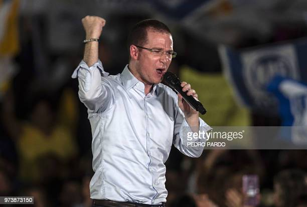 Mexico's presidential candidate Ricardo Anaya standing for the 'Mexico al Frente' coalition of the PANPRDMovimiento Ciudadano parties speaks to...