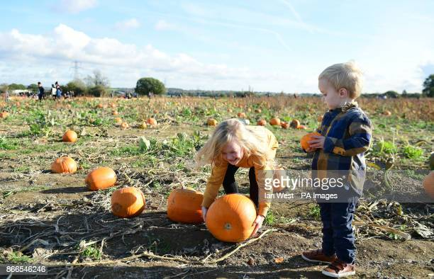 Mia and Jack West picking their pumpkin for Halloween at the Pumpkin Patch in Basildon Essex