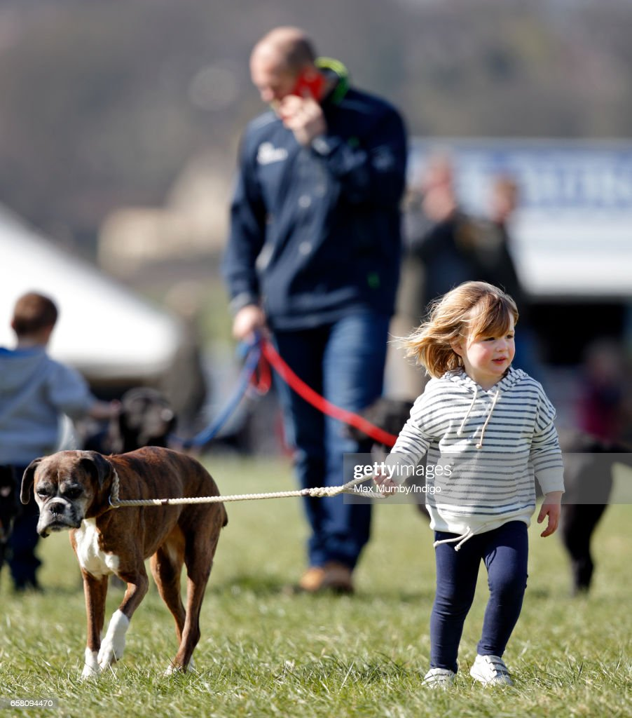 Mia Tindall walks her mother Zara Phillips's boxer dog 'Spey' as she attends the Gatcombe Horse Trials at Gatcombe Park on March 26, 2017 in Stroud, England.