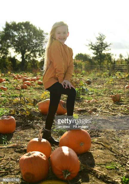 Mia West picking her pumpkin for Halloween at the Pumpkin Patch in Basildon Essex