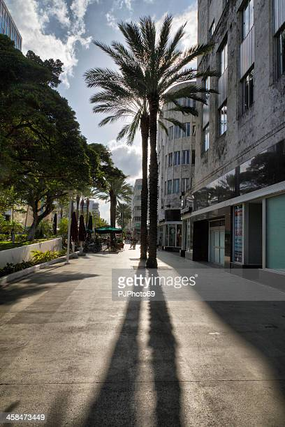 miami beach und lincoln road mall - pjphoto69 stock-fotos und bilder