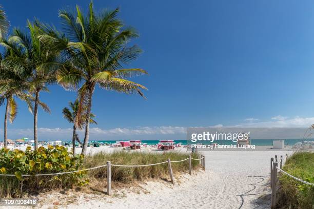 miami beach - south beach stock pictures, royalty-free photos & images