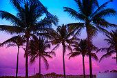 Miami Beach South Beach sunset palm trees Florida