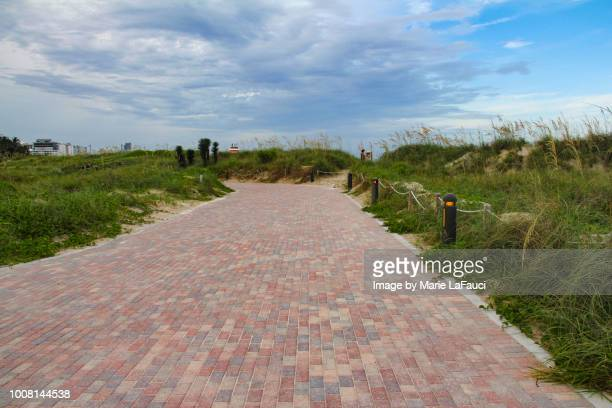 miami beach south pointe park paved walkway - miami beach south pointe park stock pictures, royalty-free photos & images