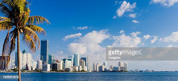 miami brickell city skyline florida usa - downtown miami stock pictures, royalty-free photos & images