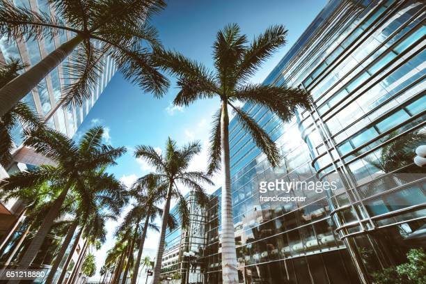 miami brickell downtown at dusk - downtown miami stock pictures, royalty-free photos & images