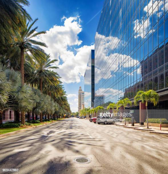 Miami Coral Gables business street with office buildings and palm trees