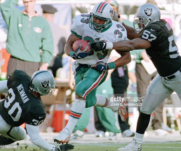 Miami Dolphin running back Karim AbdulJabbar tries to elude Oakland Raider linebacker Terry Wooden and Raider safety Anthony Newman 06 December in...