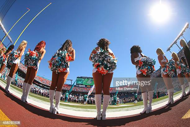 Miami Dolphins cheerleaders perform during a game against the San Diego Chargers at Sun Life Stadium on November 2 2014 in Miami Gardens Florida