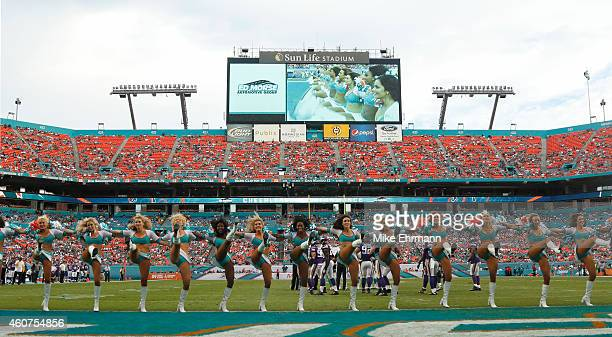 Miami Dolphins cheerleaders perform during a game between the Dolphins and the Minnesota Vikings at Sun Life Stadium on December 21 2014 in Miami...