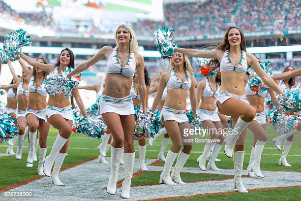 Miami Dolphins cheerleaders perform during the NFL football game between the San Francisco 49ers and the Miami Dolphins on November 27 at the Hard...