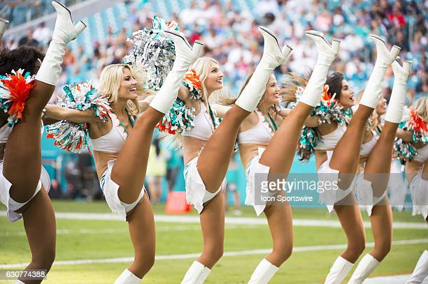 Miami Dolphins Cheerleaders Stock Photos And Pictures