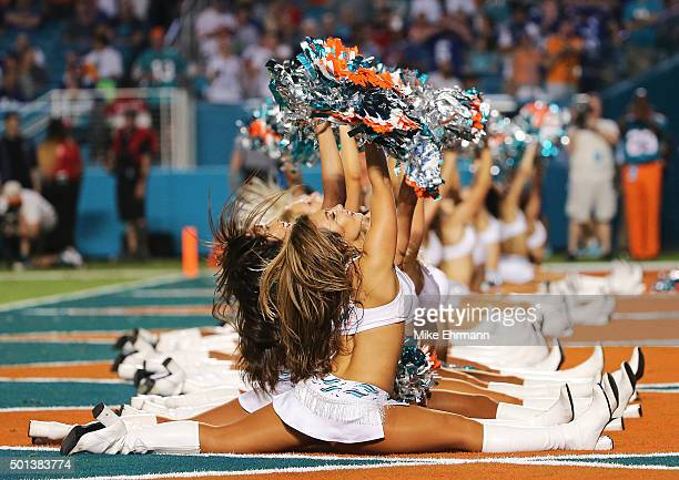 Miami Dolphins cheerleaders perform during the second half of the game against the New York Giants at Sun Life Stadium on December 14 2015 in Miami...