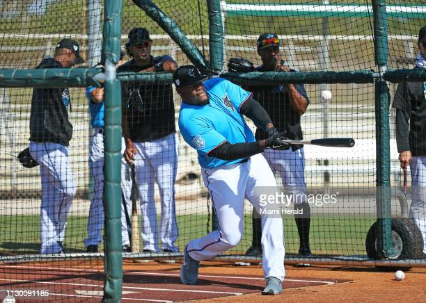 Miami Dolphins defensive tackle Vincent Taylor during Miami Marlins batting practice before the start of a spring training game against the New York...