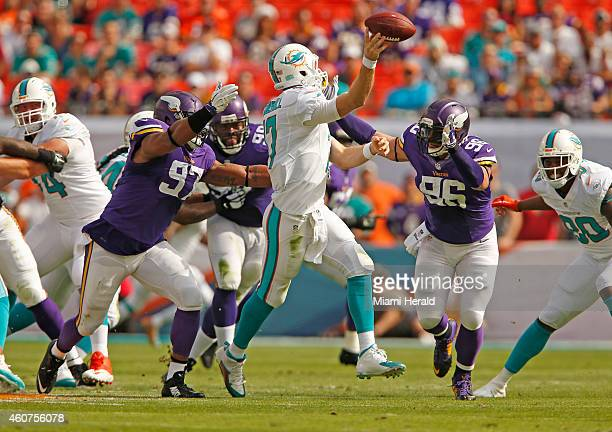 Miami Dolphins quarterback Ryan Tannehill is pressured to pass by the Minnesota Vikings defensive end Everson Griffen and defensive end Brian Robison...