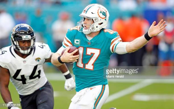 Miami Dolphins quarterback Ryan Tannehill scrambles as Jacksonville Jaguars middle linebacker Myles Jack gives chase in the second quarter on Sunday...