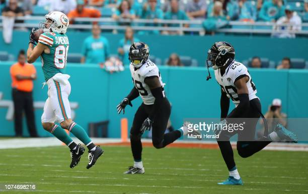 Miami Dolphins receiver Danny Amendola catches a pass in the first quarter to help set up the Dolphins' touchdown against the Jacksonville Jaguars on...