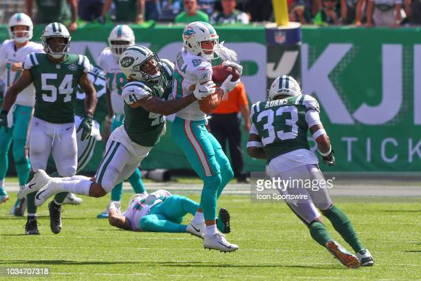 Miami Dolphins wide receiver Danny Amendola makes a catch and is hit by New York Jets defensive back Buster Skrine and New York Jets defensive back...