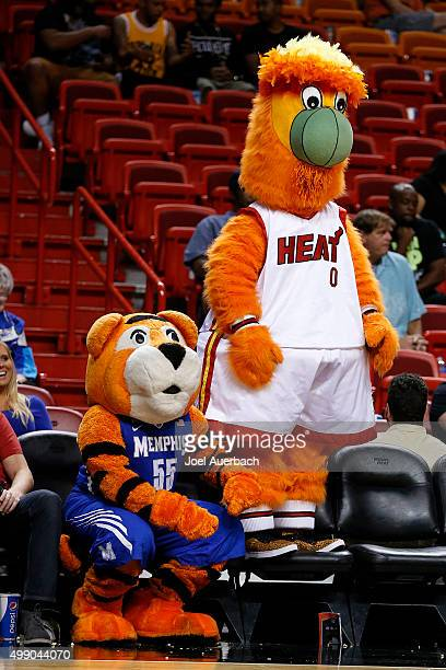 Miami Heat mascot Burnie and the Memphis Tigers mascot Tom watch second half action against the Ohio State Buckeyes on November 27 2015 at the...
