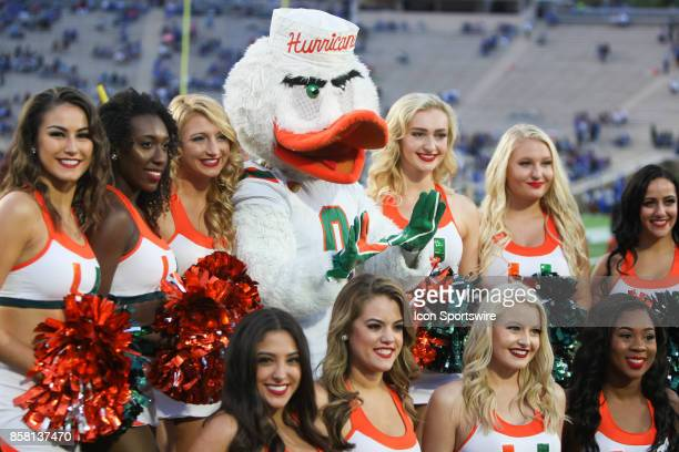 Miami Hurricanes cheerleaders and mascot Sebastian prior to the game against the Duke Blue Devils on September 29 2017 at Wallace Wade Stadium The...