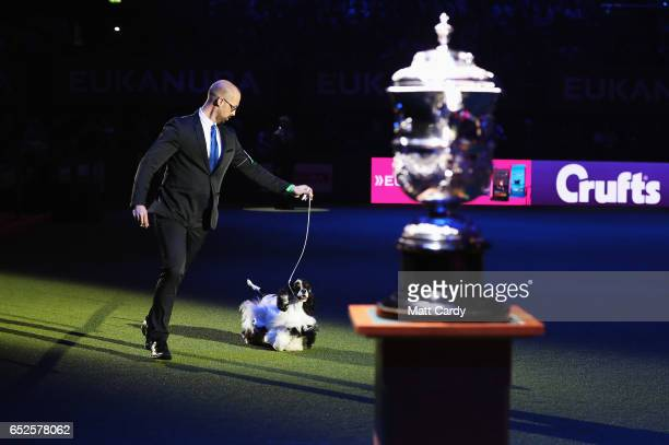 Miami Ink, an American Cocker Spaniel, seen with handler Jason Lynn, is awarded Best In Show at Crufts Dog Show at NEC Arena on March 12, 2017 in...