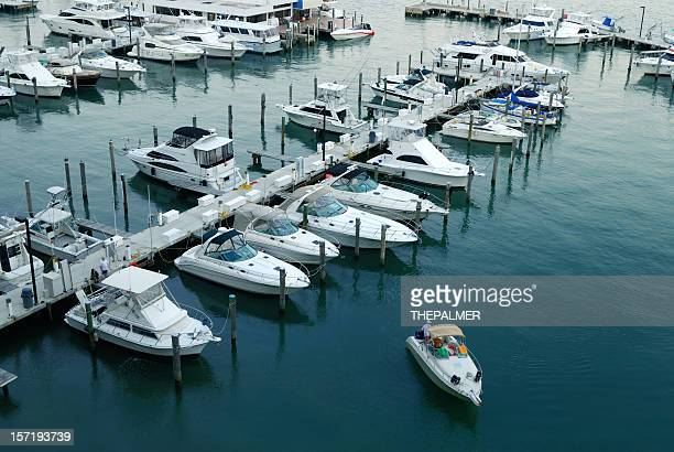 miami marina - pier stock pictures, royalty-free photos & images
