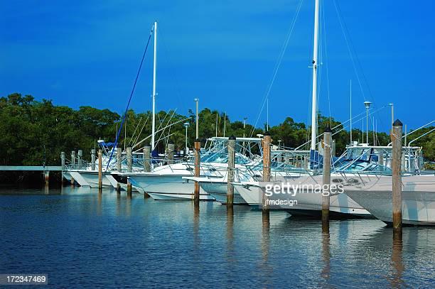 miami marina with docked boats